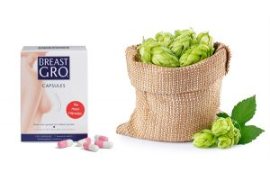 BreastGro® Capsules is een voedingssupplement met een gepatenteerde natuurlijke hopformule om de borsten en het decolleté te verstevigen of te vergroten.
